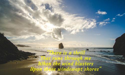 Windy shores